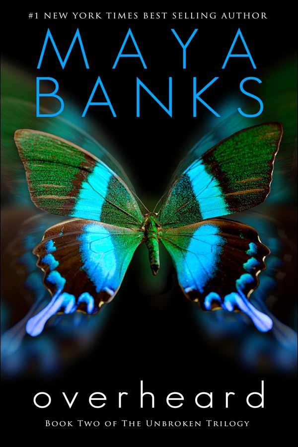 after the storm maya banks epub bud review